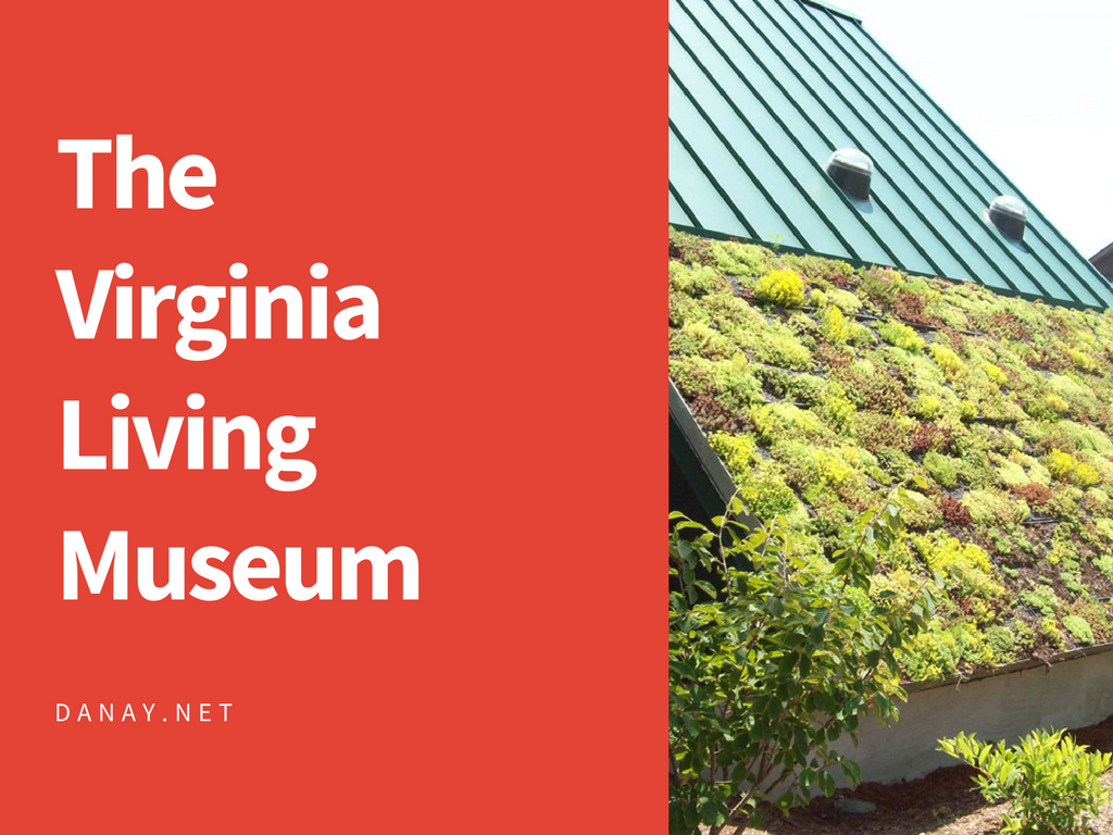 Discovery at the Virginia Living Museum