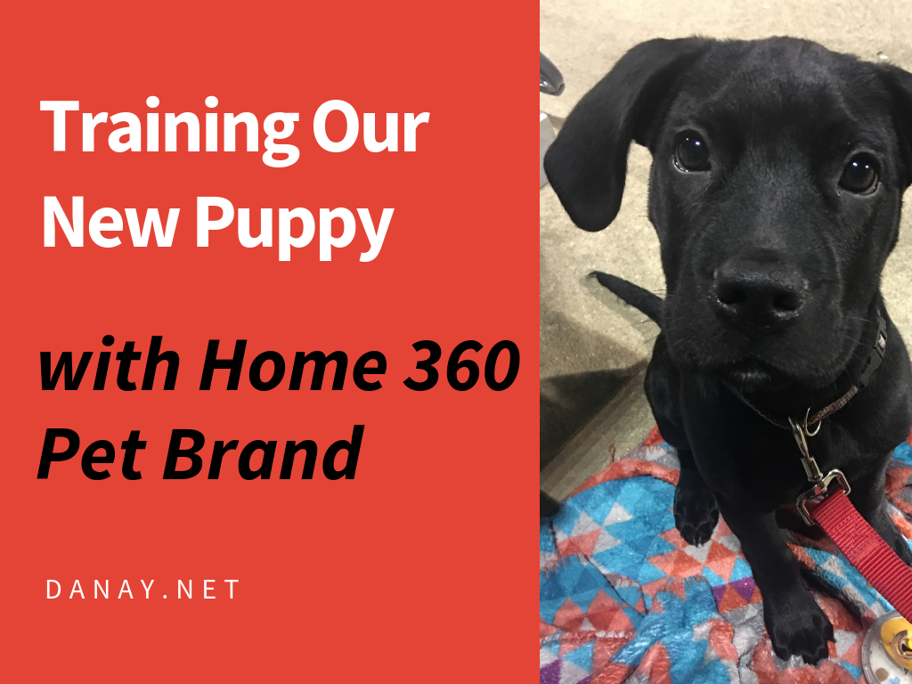 Training Our New Puppy With Home 360 Pet Brand